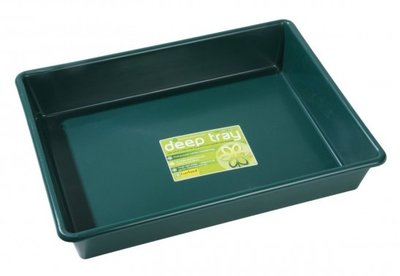 Deep Tray Green