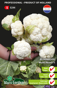 Bloemkool Multi-Head F1