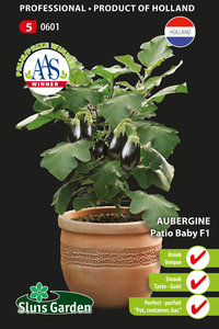 Aubergine Patio Baby F1 (pot)