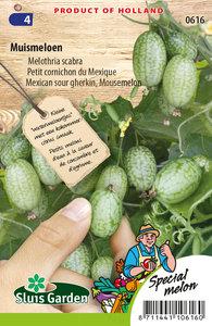 Muismeloen, Melothria scabra