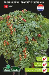 Tomaat Micro Cherry