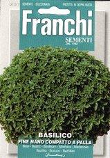 Pot-Basilicum--fijn-bladig