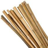 Plantstokken-25-stuks--bamboe-90-cm