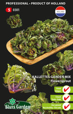 Kalettes-Flowersprout