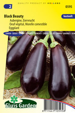 Aubergine-Black-Beauty
