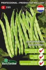 Stokspekboon-Neckarkonigin-(original-selection)