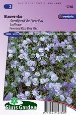 Vlas-Blauw-(Linum)